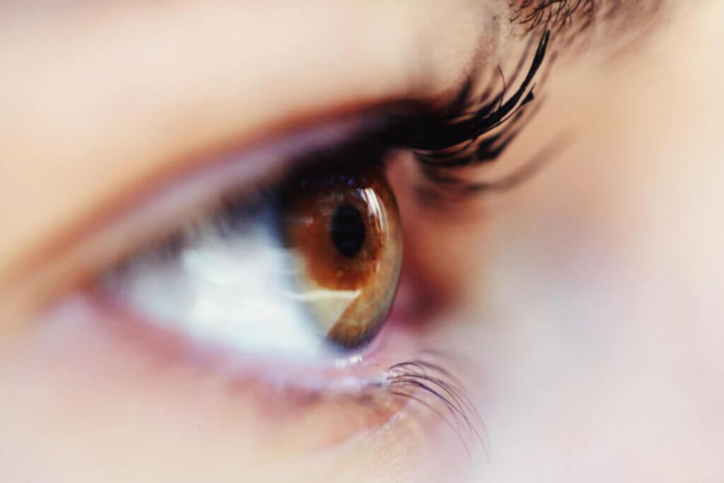 Nahaufnahme bzw. Closeup eines braunen Auges mit schwarz geschminkten Wimpern