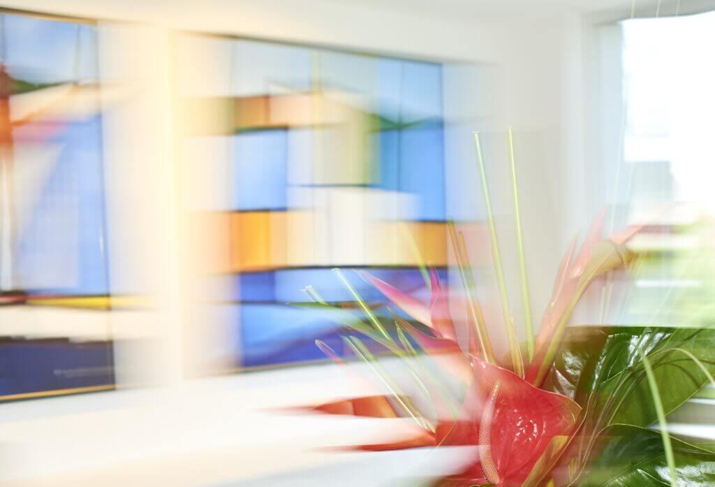 Buntes, kunstvolles Headerbild für die Startseite von Roman Eyes, ohne Logo mit Pflanze im Vordergrund